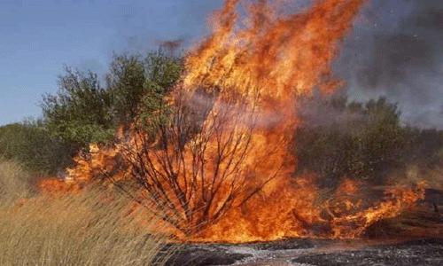 Kwara loses N27.6m property to bush burning