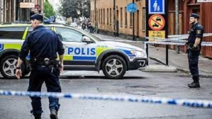 Sweden convicts woman for abducting own son