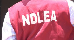 NDLEA nabs 2 drug traffickers with N264m cocaine in Abuja