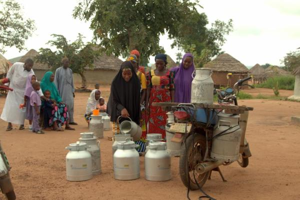 FrieslandCampina WAMCO Nigeria: Solid, steady progress on backward integration in dairy development