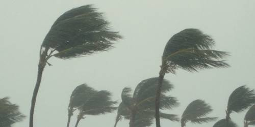 Windstorm: Hundreds of houses blown off, many feared dead in Imo