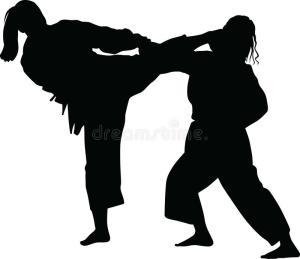 Lagos judo organizes seminar for women