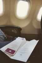 Turkish Airlines_013