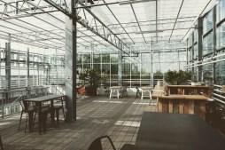 Urban Farmers Den Haag001
