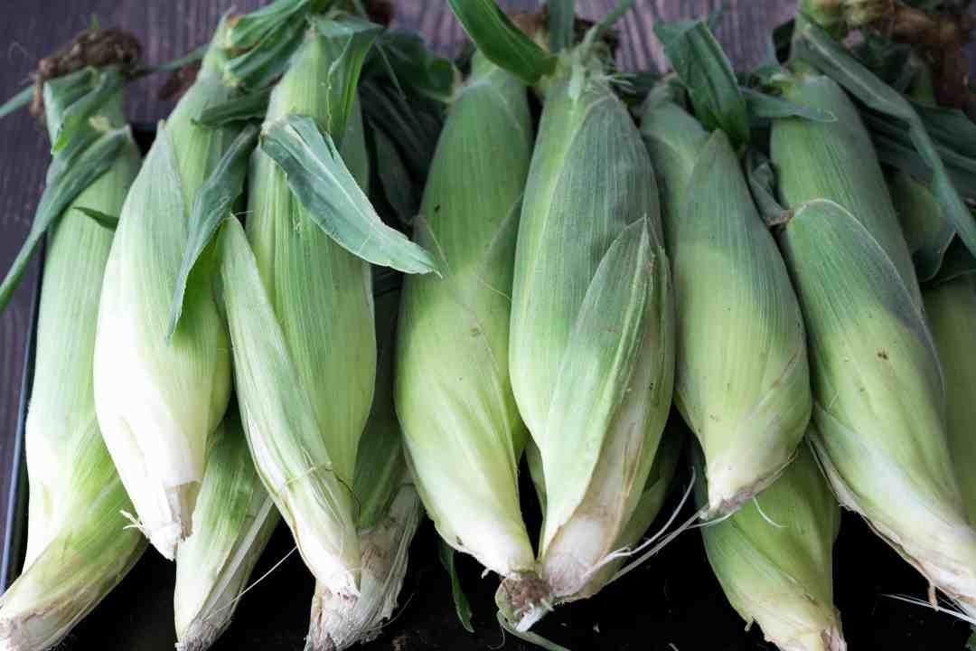 12 ears of fresh corn on the cob