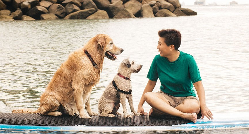 Cheerful Dogs Nee on Sentosa