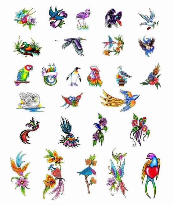 Bird tattoos - what do they