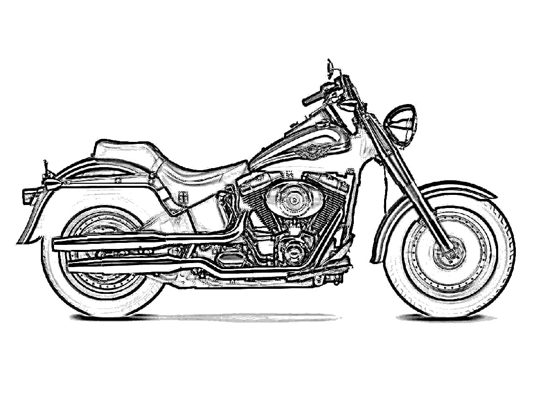 Harley Davidson Pictures Pics Images And Photos For Your