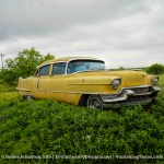 Cadillac Yard Art in Texas Hill Country – Marble Falls, Texas