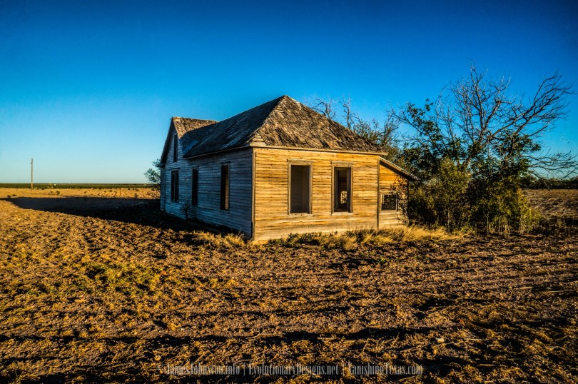 Abandoned Farm House Near Anson, Texas