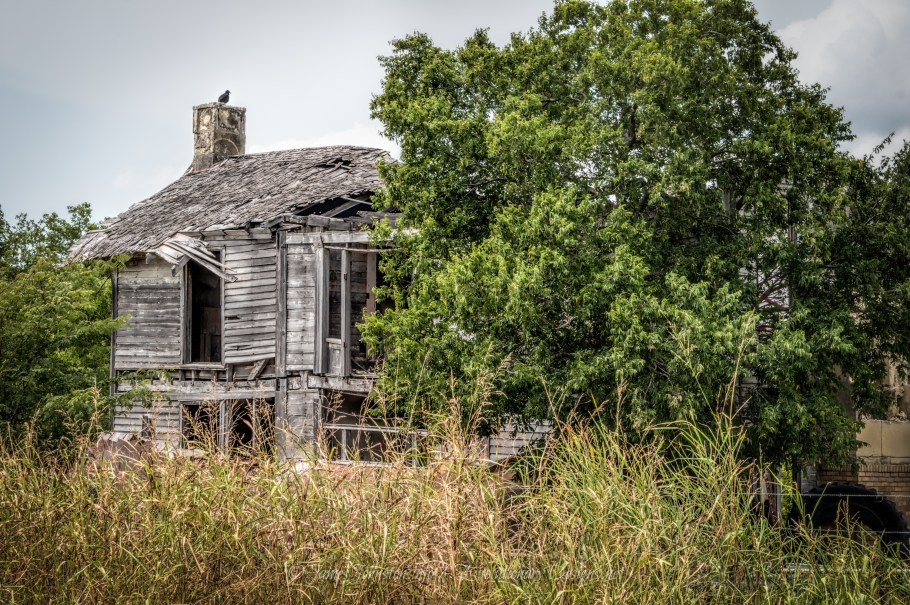 All that Remains of the Old Wheeler House