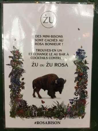 Zubrowka x Rosa Bonheur