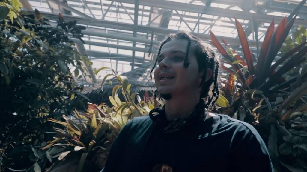 Video: Ark Noah - Itch