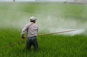 man spraying pesticides