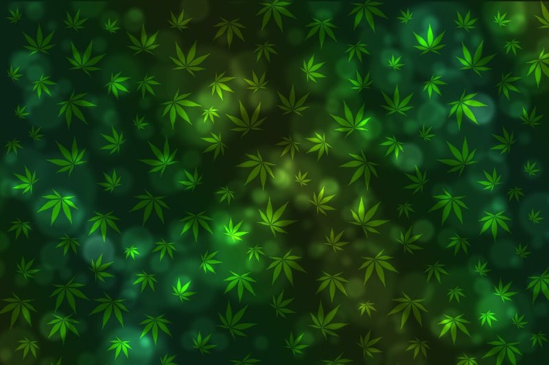 cannabis innovations