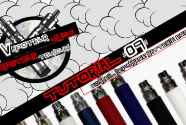Tutorial #09 - TIP / TROUBLESHOOTING EGO BATTERY