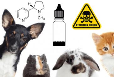 DOSSIER: E-liquids, nicotine, pas op voor uw huisdieren!