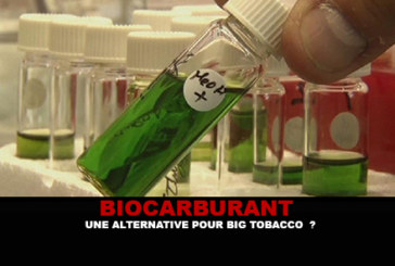 BIOCARBURANT : Une alternative pour Big Tobacco ?