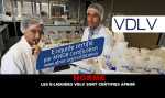 סטנדרטי: VDLV דואר נוזלים הם Afnor מוסמך.