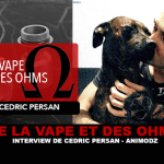 OF VAPE AND OHMS: Interview with Cedric Persan (Animodz)