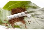 SPANNING: Homeopathie, een goede manier om te stoppen met roken?