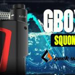 מידע נוסף: GBOX Squonk (Geek Vape)