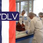 ЭКОНОМИКА: VDLV выдвигает французский и устойчивый вид.