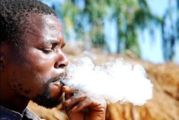 בורקינה פאסו: מס טבק העובר מ- 30% ל- 45%.