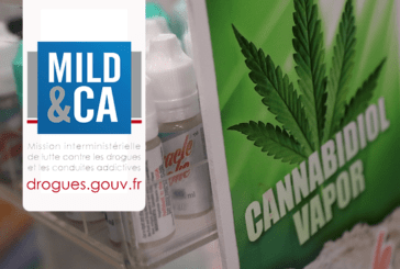 FRANCE: The party is over for cannabidiol and the Mildeca wants to restore order!