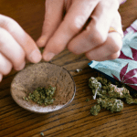 FRANCE: The tobacconists, future first reference network of cannabis?