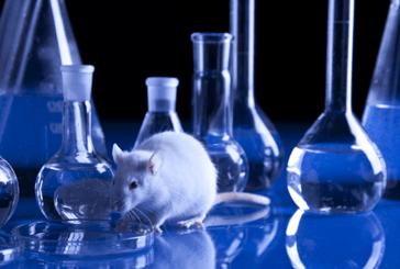 STUDIO: l'e-sigaretta può causare alterazioni della funzione polmonare?
