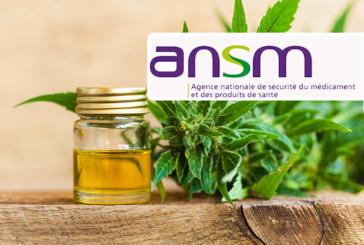 CANNABIDIOL: ANSM is concerned about products sold on the internet to epileptics