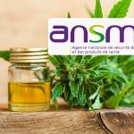 CANNABIDIOL: ANSM maakt zich zorgen over producten die op internet worden verkocht aan epileptici
