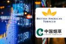 כלכלה: הטבק הבריטי הבריטי טבק נופל, סין הלאומית טבק מצליח ההנפקה הראשונה שלה!