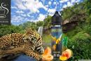 RECENSIONE / PROVA: Guapore (Amazon Range) di e-Tasty Liquids