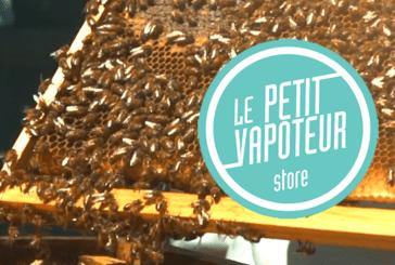 BIODIVERSITÉ : Des ruches s'invitent sur le toit de l'entreprise d'e-cigarettes «Le Petit vapoteur» !