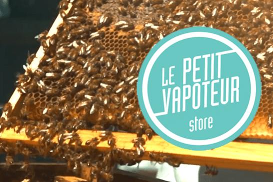 """BIODIVERSITÄT: Bienenstöcke sind auf dem Dach der E-Zigarettenfirma """"Le Petit vapoteur"""" eingeladen!"""