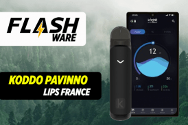 FLASHWARE : Koddo Pavinno – Laboratoire Lips