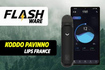 FLASHWARE: Koddo Pavinno - laboratorium voor lippen