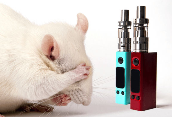 ИССЛЕДОВАНИЕ: электронная сигарета, мышь, никотин и риск нескольких видов рака ...