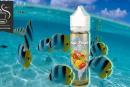 REVIEW / TEST: Sun Tropic van O'Juicy