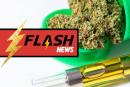 ETATS-UNIS : L'Oregon envisage d'interdire l'usage d'arômes dans la vape au cannabis