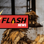 CAMEROON: Numerous criticisms against foreign interference on the traceability of tobacco products