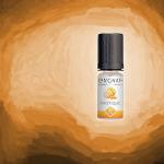 REVIEW / TEST: Exotic van Enovap