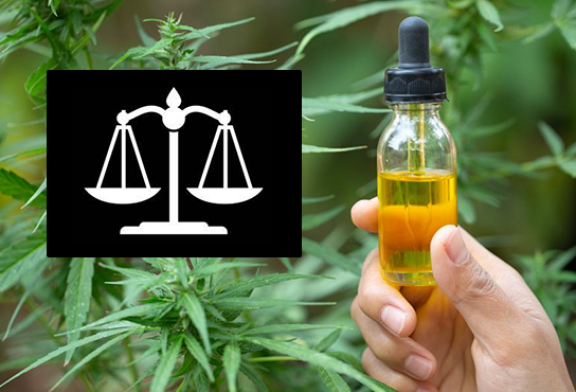 LAW: Europe considers the ban on CBD illegal in France!
