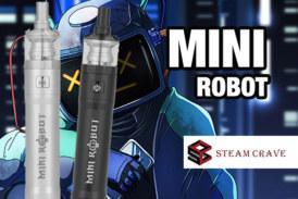 ИНФОРМАЦИЯ О ПАКЕТЕ: Mini Robot (Steam Crave)
