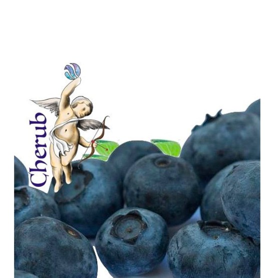 Cherub Blueberry Menthol E Liquid Juice