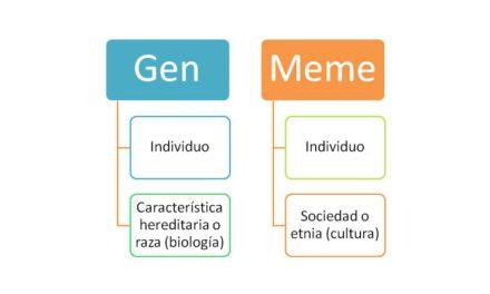 Herencia memetica