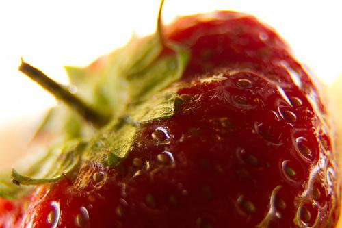 Jordbærmus – Aune Sand slaktet av VG!
