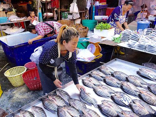 Kosthold – spis fisk og dø gammel